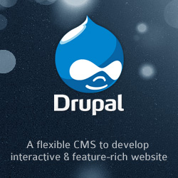 Drupal - A Flexible CMS to Develop Interactive and Feature-Rich Website